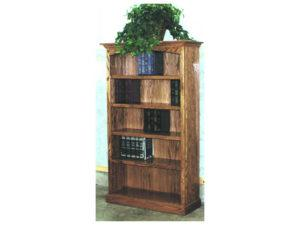 Regular Style Bookcases